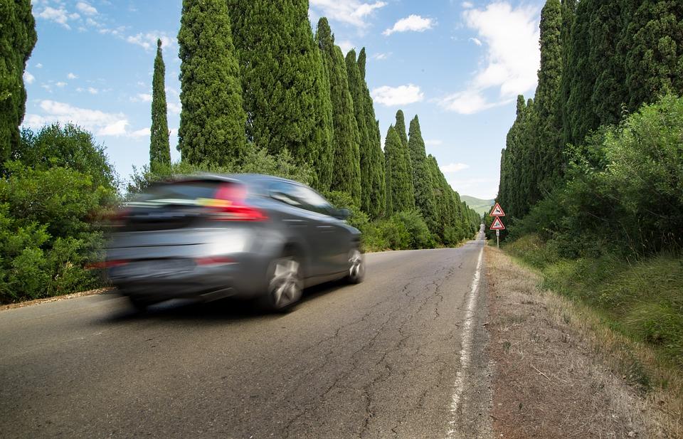 自然の中を走る車